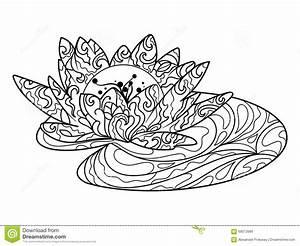 Dessin Fleurs De Lotus : livre de coloriage de fleur de lotus pour le vecteur d 39 adultes illustration de vecteur ~ Dode.kayakingforconservation.com Idées de Décoration