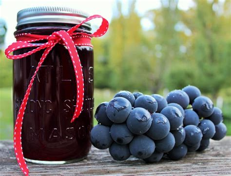 grape juice homemade arbor diy grapes homemadefoodjunkie recipe lynden syrup juicer junkie
