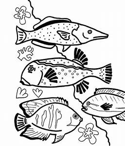 Saltwater Fish Coloring Pages Reef Beautiful Coral Grig3org