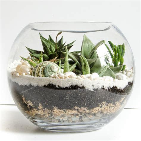 blumen dekorieren im glas sukkulenten im glas im blickfang kreative deko ideen mit pflanzen