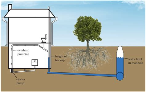 Basement Pump Up Toilet by Lincoln Ne Gov Lincoln Wastewater System Gt Property