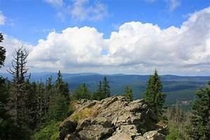 Bilder Vom Wald : nationalpark bayerischer wald reisef hrer auf wikivoyage ~ Yasmunasinghe.com Haus und Dekorationen