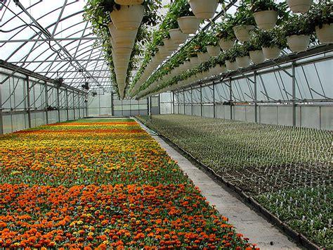 umass supports regional greenhouse gathering umass