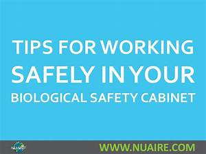 Tips For Working Safely In Your Biosafety Cabinet