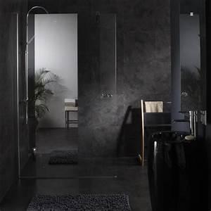 Miroir De Douche : paroi pour douche parois douche avec effet miroir planete bain ~ Nature-et-papiers.com Idées de Décoration