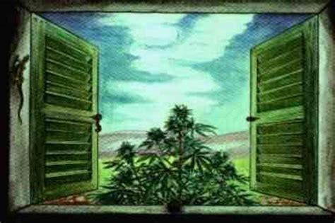 culture cannabis interieur materiel materiel culture cannabis interieur noclegi widoknatatry pl