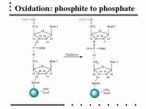 Oxidation: phosphite to phosphate