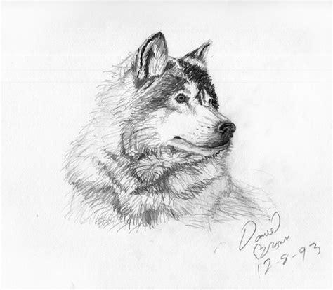 big bang master pencil portrait sketches