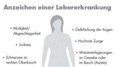 kranke leber lebersternchen sind ein warnzeichen