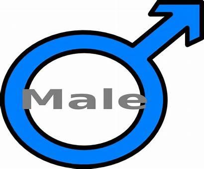 Male Symbol Clipart Clip Masculine Clipartpanda Vector