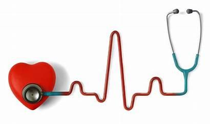 Animated Health Clipart Cliparts Cardiovascular Medical Clip