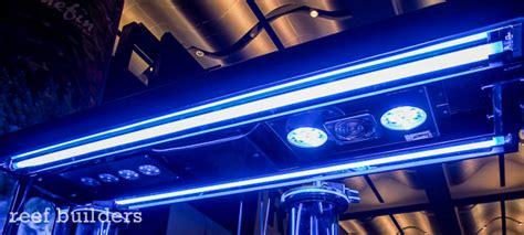 T5 Light Bulbs by Triton Aquatics Hybrid T5 Amp Led Invites You To Bring Your