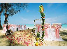 Wedding Pictures Wedding Photos Beach Wedding Photos