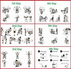 Bodybuilding U0026 Fitness Exercise For Bodybuilding Photo Bodybuilding Program