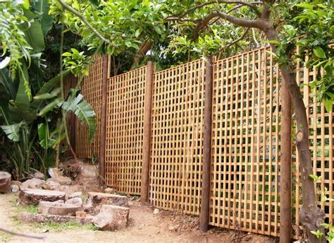 Outdoor Privacy Trellis by 19 Best Images About Privacy Screen On Diy