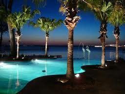 Melhor da Vida: Natureza: Palmeira
