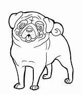 Pug Coloring Line Deviantart sketch template