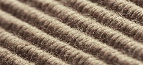 How Do You Clean A Sisal Rug by How To Clean Your Fibre Carpet Sisal Coir