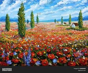 Flower Painting Field Red Poppies. Image & Photo   Bigstock