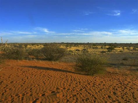 Deserti caldi e freddi nel mondo   Deserts of the world, Namib desert, Country roads