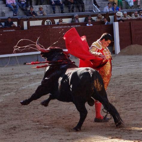 File:Corrida madrid eq 2014-04-13 04.jpg - Wikimedia Commons