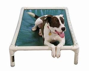 merry dogs blog With destruction proof dog bed