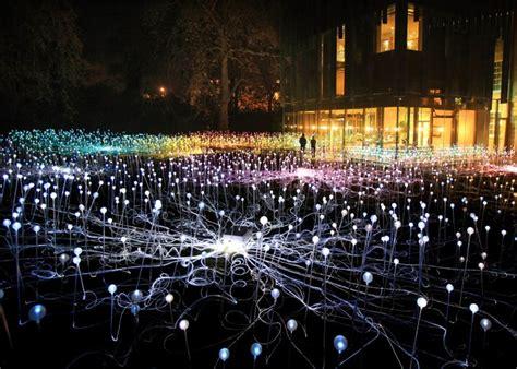 illuminated light bulb garden