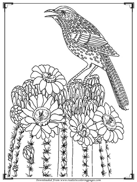 adult coloring birds printable birds coloring pages for adults realistic