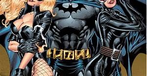 """""""Batman, Black Canary, & Catwoman by Al Rio *"""" This looks ..."""