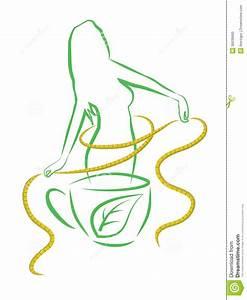 Tea For Weight Loss. Vector Illustration. Stock Vector ...
