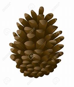 Pine Cone Clipart - Clipart Suggest