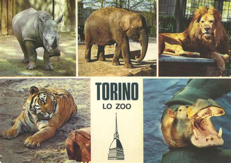 Les Zoos Dans Le Monde  Giardino Zoologico Di Torino