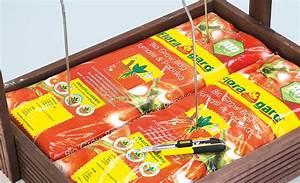 Wann Tomaten Pflanzen : wann tomaten auss en wann gehts wieder los mit auss en seite 2 tomaten pikieren friedrichs ~ Frokenaadalensverden.com Haus und Dekorationen