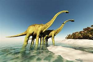 Strange 50 Feet Long Neck U0026quotdragonu0026quot Dinosaur Discovered In