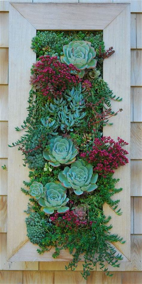 Vertical Succulent Garden Indoor by The 25 Best Vertical Gardens Ideas On Wall