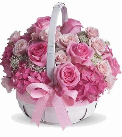 Basket Roses Sparkling