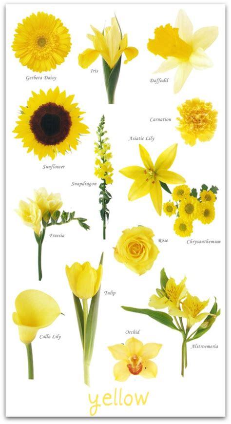 glossary  flowers  peak xperience