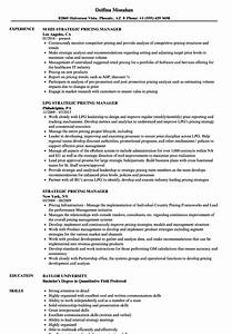 it infrastructure project manager resume docproject With resume prices