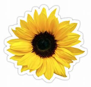 """""""sunflower flower floral yellow brown"""" Stickers by"""