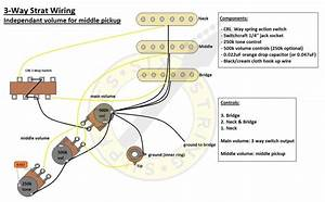 Strat Wiring Diagram Sss