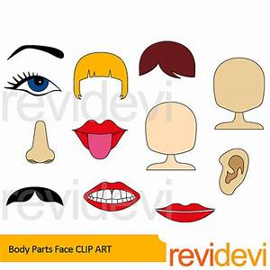 Body parts clipart body parts face clip art the body