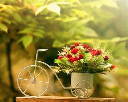 1024 Backgrounds Flowerpot Bike 1280 Wallpapers Pixelstalk