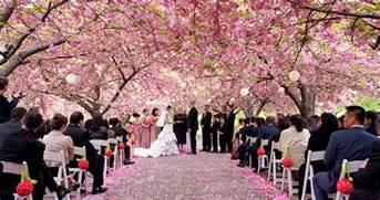 botanical gardens wedding attractive botanical gardens wedding botanical gardens wedding alices garden gardensdecor