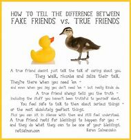 Best Fake Friends Ideas And Images On Bing Find What Youll Love