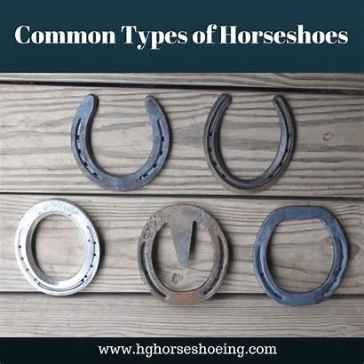 Types Horseshoes Common Shoe Regular Luck