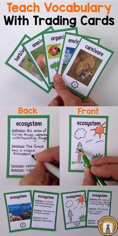 teach vocabulary  trading cards students write