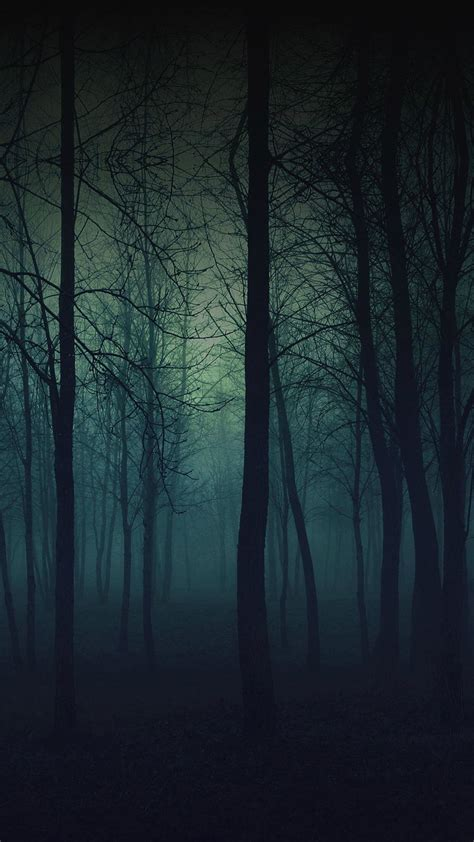 Eerie Forest Night #iphone #6 #plus #wallpaper  Iphone 6