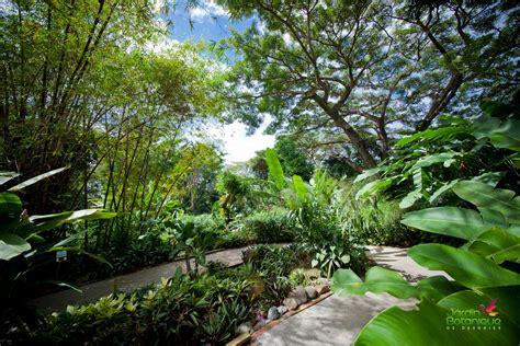 photos jardin botanique deshaies
