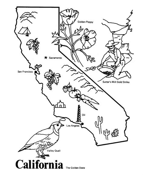 usa printables state  california coloring pages