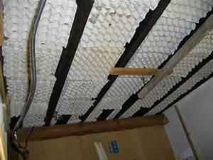 Isolation Phonique Mur Chambre : chambre de pousses les delices d agnes ~ Premium-room.com Idées de Décoration